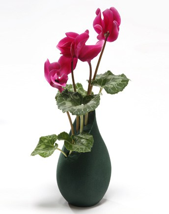 15 Beautiful Flower Vases