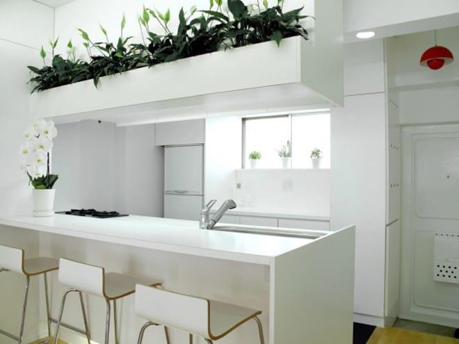 Contemporary Japanese Home Design, M Mansion By Bakoko