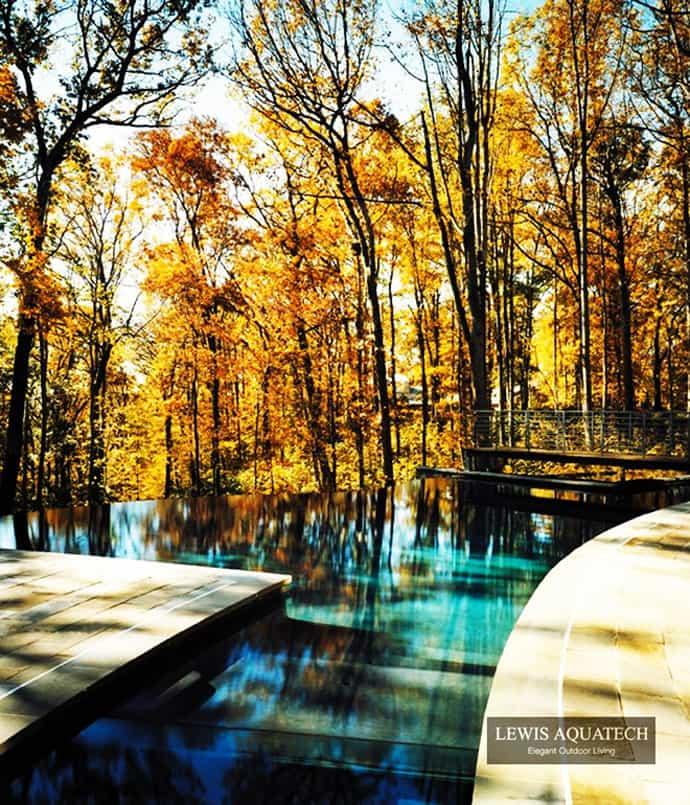 Infinity Pool Backyard Lake