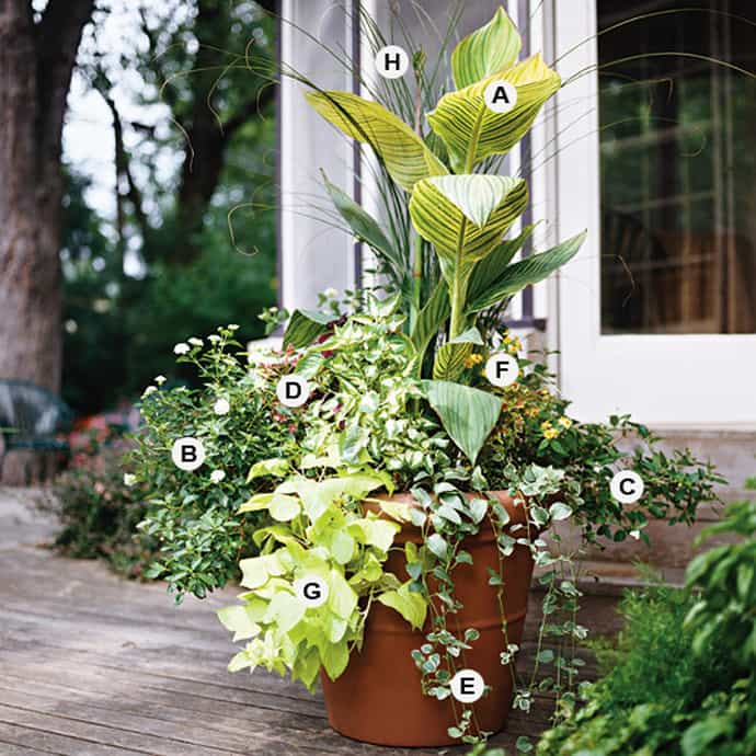 25 Container Gardens Recipes To Express Your Personality