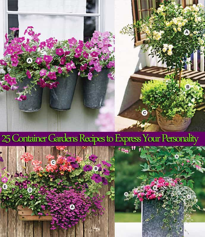 8 Stunning Container Gardening Ideas: 25 Container Gardens Recipes To Express Your Personality