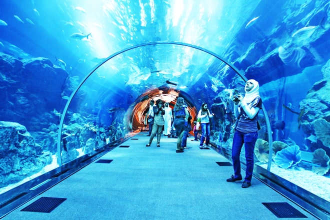 Dubai_Mall_Aquarium designrulz (7)