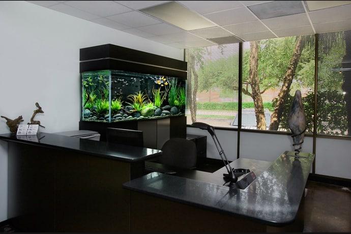 aquarium house designrulz (14)