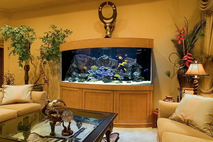 aquarium house designrulz (24)