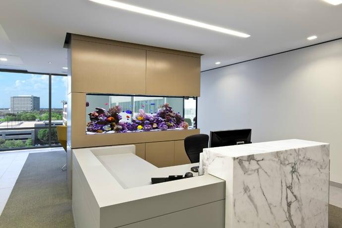 aquarium house designrulz (27)