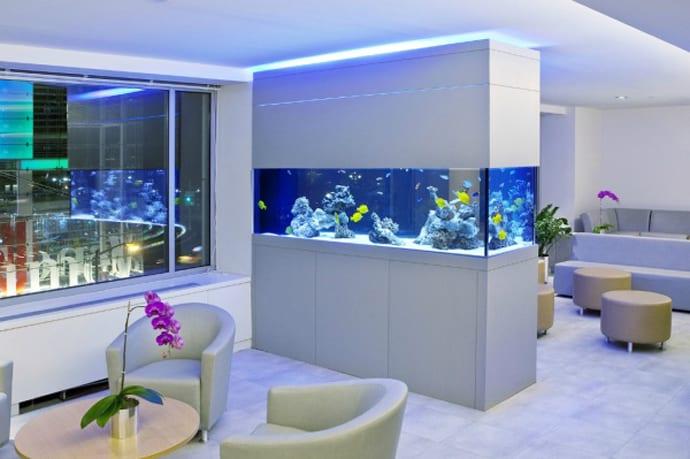 aquarium house designrulz (7)
