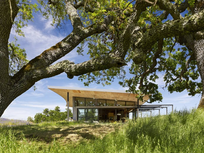 Feldman Architecture designrulz (13)