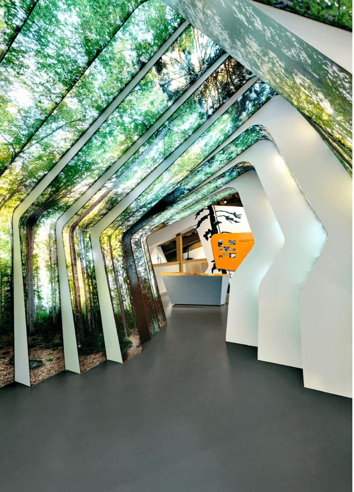 designrulz-nature-004