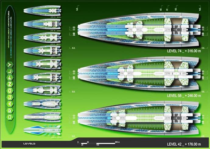dragonfly_ designrulz jpg (21)