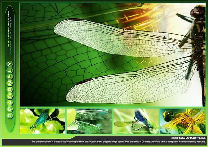 dragonfly_ designrulz jpg (5)