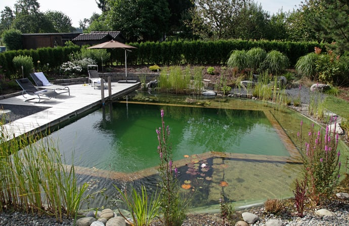 Natural Swimming Pools-DESIGNRULZ-013