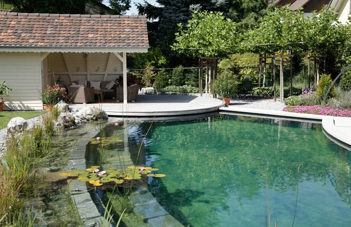 Natural Swimming Pools-DESIGNRULZ-014