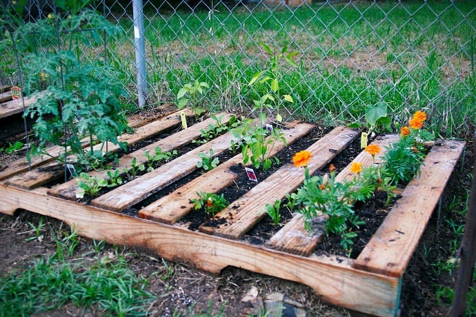 natural wood or mediterranean touch pallet garden designrulz 2 - Garden Ideas With Pallets