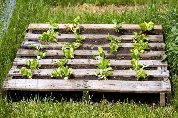 25 ways of how to use pallets in your garden for Flower beds out of pallets