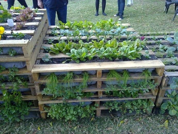 pallet garden designrulz (25)
