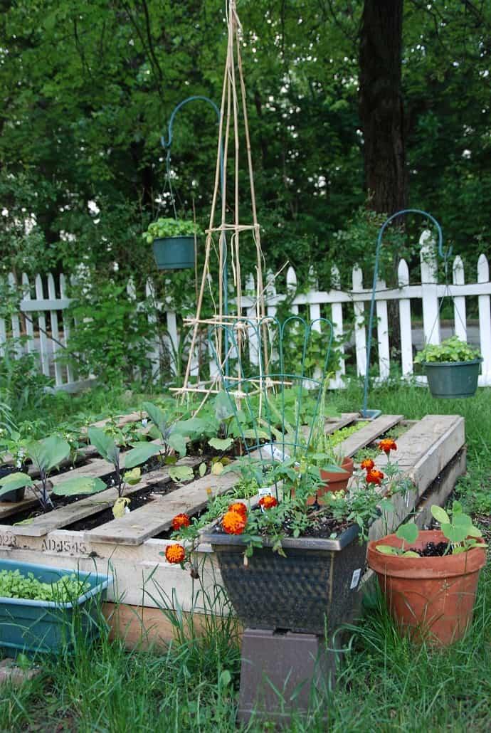 pallet garden designrulz (3)