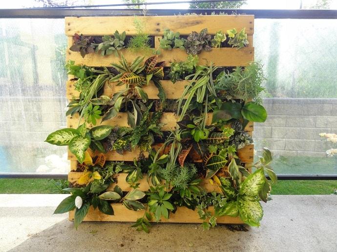 pallet garden designrulz (5)