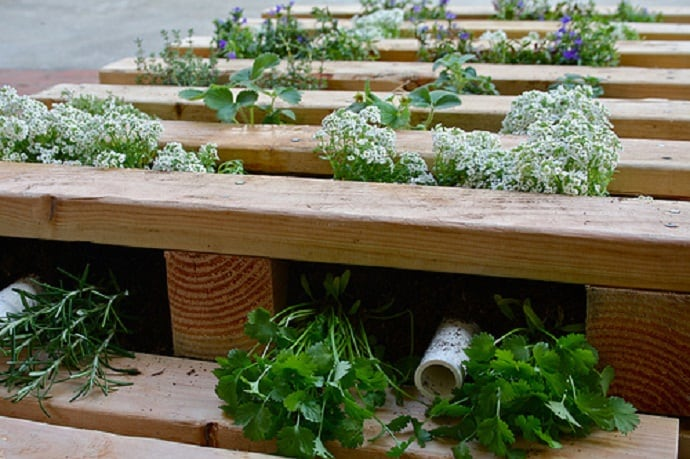 Garden Ideas Pallets: 25 Ways Of How To Use Pallets In Your Garden