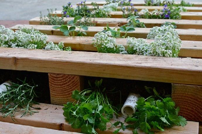 pallet garden designrulz (6)