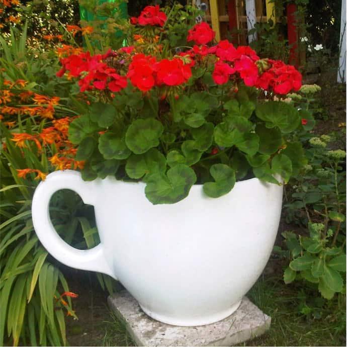 teacup-designrulz-027