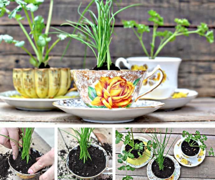 teacup-designrulz-030
