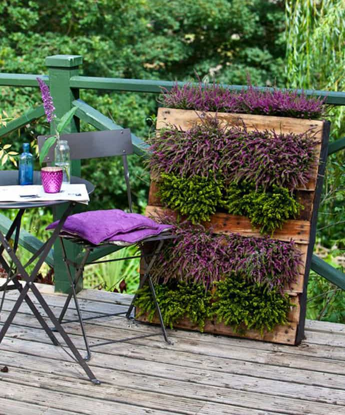 Colorful-wall-planter-all-set-to-grace-your-homes-interior