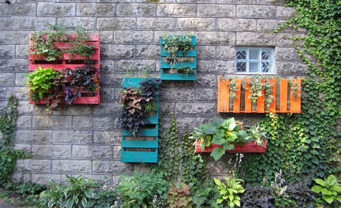 DIY Pallet Living Wall ?