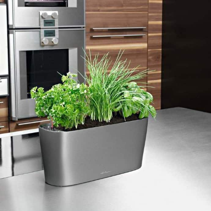 Kitchen Window Plant Shelf: 10 Gadgets For Your Kitchen Herbs