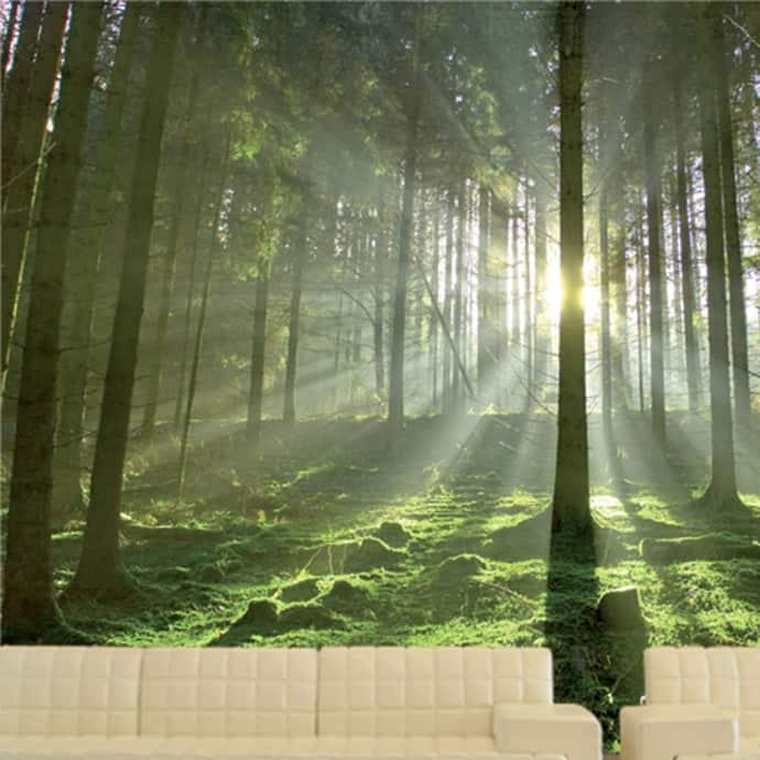 wallcover-designrulz-008