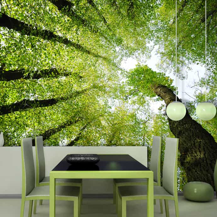 wallcover-designrulz-013