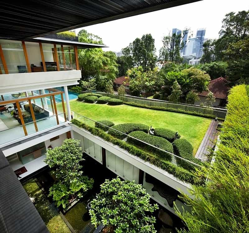 The Sun House By Guz Architects A Hevean Of Green In: Modern Tropical Bungalow: Dalvey Road House By Guz Architects