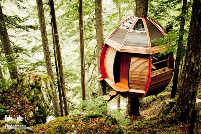 Hemloft A Secret Tree House In The Woods Canada