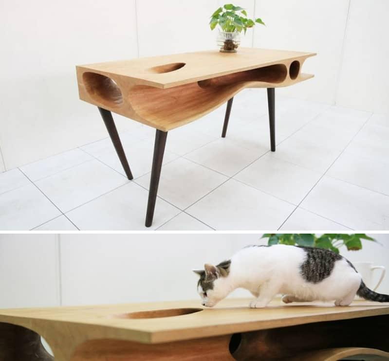 cat desk designrulz cover