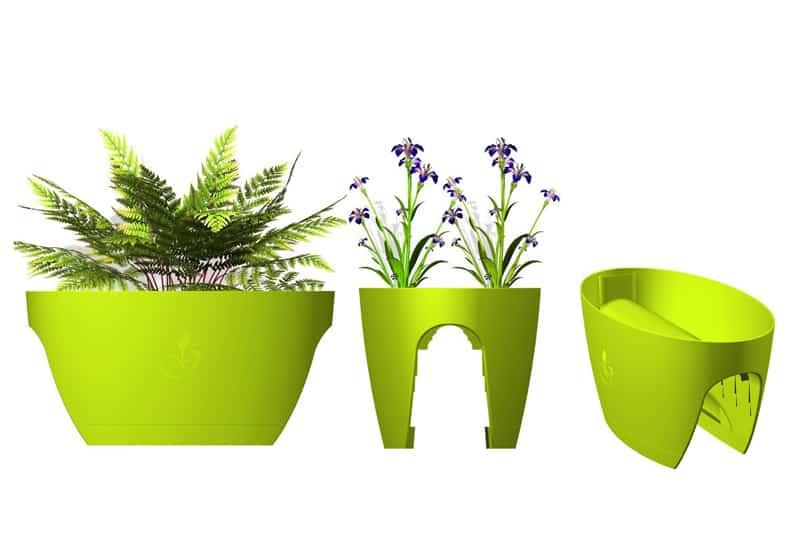 PLANT 2 (2)