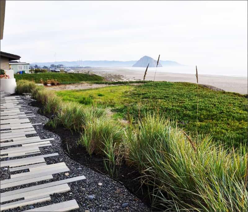 modern landscape designrulz (4)