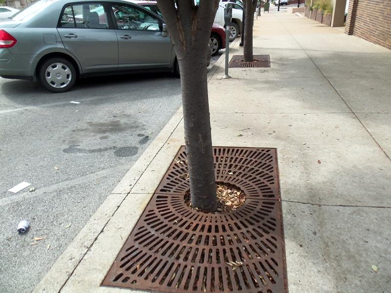 tree grates designrulz (33)