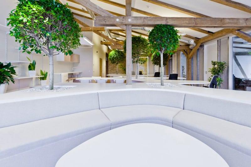 green office (1)
