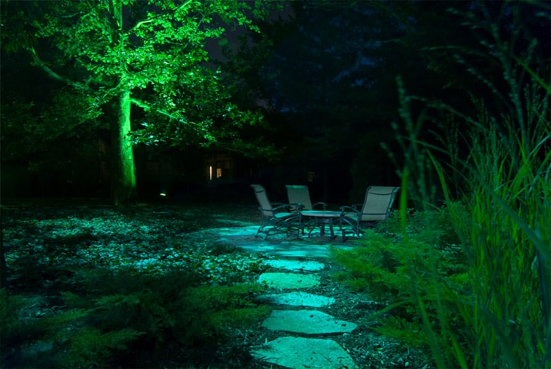light night garden (38)