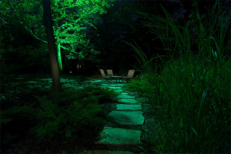 light night garden (39)
