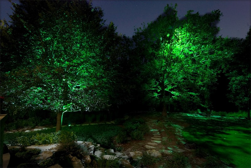 light night garden (41)