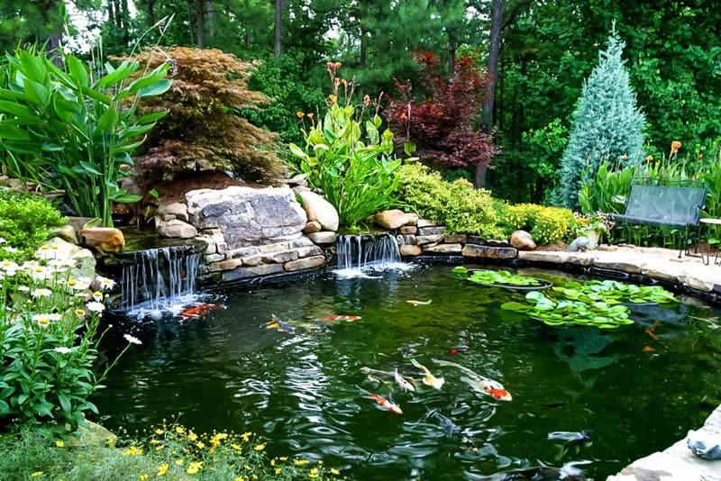 water garden designrulz (10)