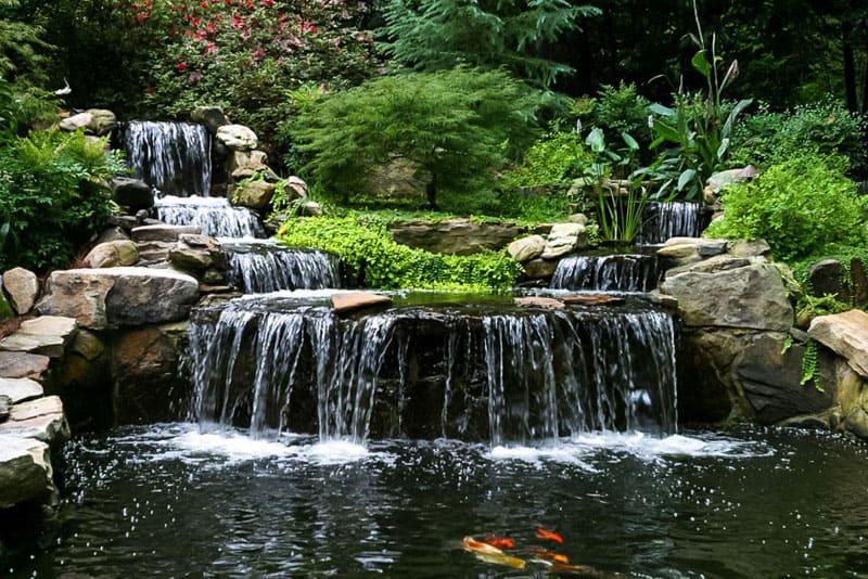 water garden designrulz (11)