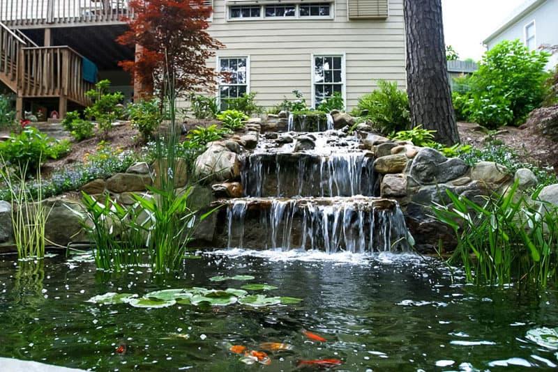 water garden designrulz (16)