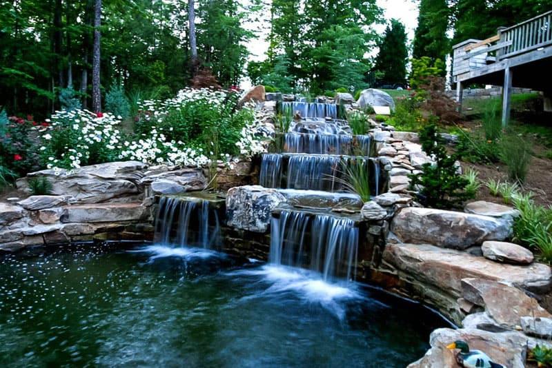 water garden designrulz (18)