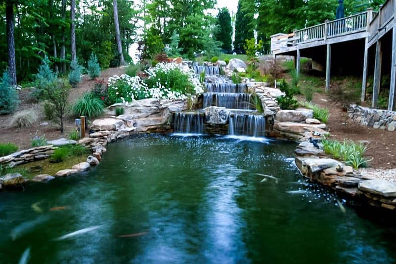 water garden designrulz (19)
