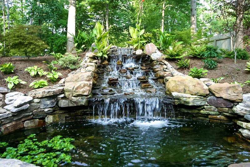 water garden designrulz (20)