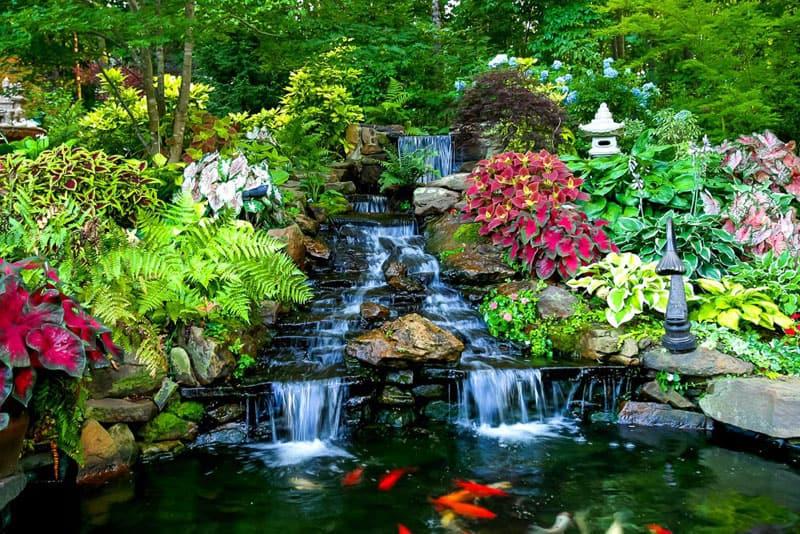 water garden designrulz (3)