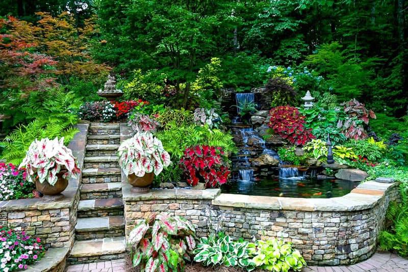 water garden designrulz (4)