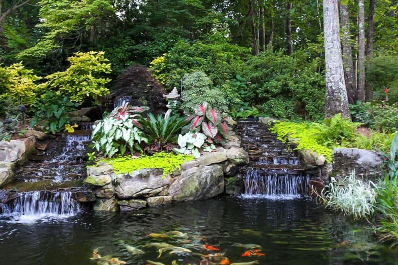 water garden designrulz (6)
