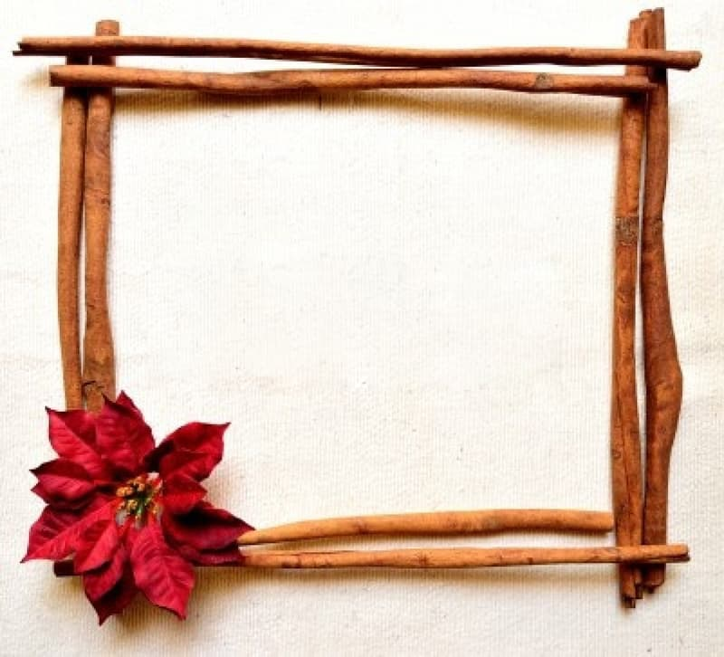 4 cinamon frame (1)